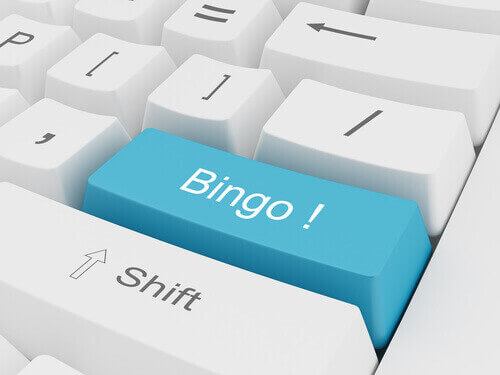 Online Bingo rules for Kiwi players