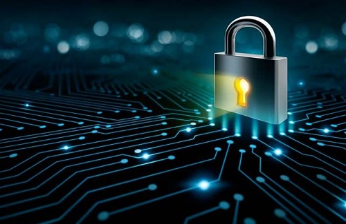 Microchip Flaw Global Problem NZ